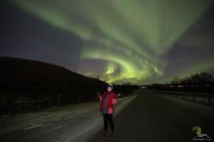 Enjoy the Arctic10